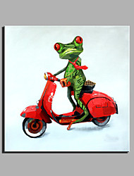 Oil Painting Modern Abstract Pure Hand Draw Ready To Hang Decorative  Oil Painting Cycling Of The Frog