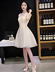 Cocktail Party Dress-Champagne / Silver A-line Scoop Knee-length Lace / Tulle