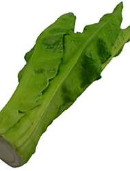 Simulation Of Lettuce
