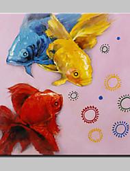 lager pintados à mão pintura a óleo peixinho moderna no retrato da arte da parede da lona para o frame casa do whit pronto para pendurar