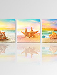 VISUAL STAR®3 Panel Seascape Giclee Canvas Prints Seashell on Beach Landscape Canvas Art Ready to Hang
