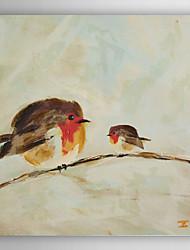 pássaro amigável óleo pintados à mão animais pintura com moldura esticada
