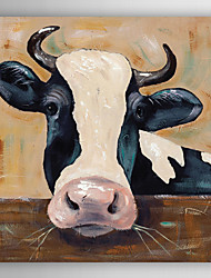 Hand Painted Oil Painting Animal Cow Portrait with Stretched Frame