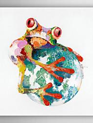 ручная роспись маслом животное лягушка держать на мяч с растянутой кадр
