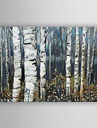 ручной росписью березы картины маслом пейзаж серый с растянутыми кадр 7 стены arts®