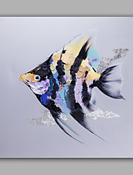 Oil Painting Modern Abstract Fish Hand Painted Canvas with Stretched Frame