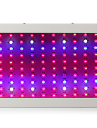 Full Spectrum 1000W 100leds Led Grow Light For Greenhouse Grow box tent Flowering Plant AC85-265V