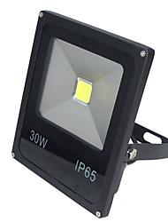30W LED прожекторы 2700-3000 lm Холодный белый COB AC 85-265 V 1 ед.