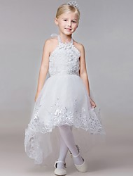 Ball Gown Chapel Train Flower Girl Dress - Rayon Sleeveless Halter with
