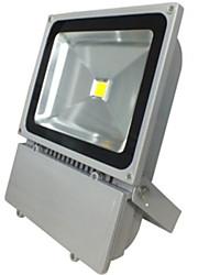 100w couleur blanc froid chaud et imperméable conduit projecteur (85-265V)