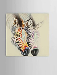 Zebra Wall Art 100% handpainted Modern abstract oil paintings on canvas Home decoration Ready to Hang