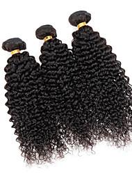 Menschenhaar spinnt Brasilianisches Haar Kinky Curly 3 Stück Haar webt