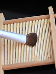 Soft And Pure Little Horse Hair Eye Shadow Brush
