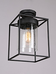 Create Single Head Industrial Glass Ceiling Lamp for the Indoor / Hotel Room Decorate Ceiling Light