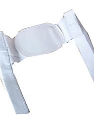 Back Supports Manual Shiatsu Support Adjustable Dynamics Acrylic
