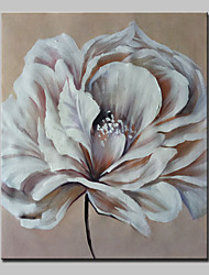 Hand Painted Flower Oil Painting On Canvas Modern Wall Art Picture With Stretched Frame Ready To Hang
