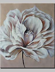 ручная роспись маслом на холсте цветок современной стены искусства картины с растянутой кадр готов повесить