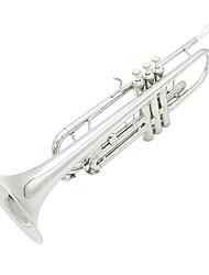 instrumentos de sopro prata trompete lade b reed
