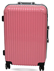 Unisex PVC Professioanl Use Travel Bag