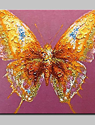 Hand Painted Animal Butterfly Oil Paintings On Canvas Modern Wall Art Picture With Stretched Frame Ready To Hang 80x80cm
