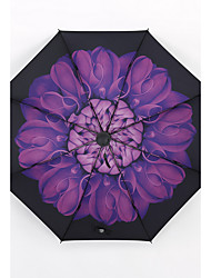 Purple Chrysanthemum Sunny And Rainy Umbrella