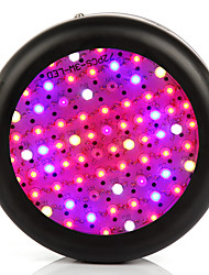 Full Spectrum 200W  Led Grow Light Led Growing Lamp for Hydroponics Flowers Plants Vegetables Growing