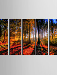 canvas Set Paisagem Estilo Europeu,5 Painéis Tela Vertical Impressão artística wall Decor For Decoração para casa