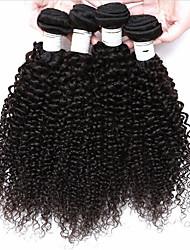 Menschenhaar spinnt Brasilianisches Haar Kinky Curly 4 Stück Haar webt