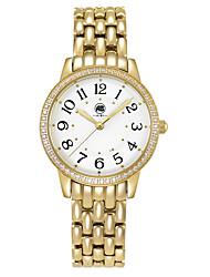 Victoria Golden Case White Dial Golden Stainless Steel Strap Watch
