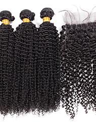 Menschenhaar spinnt Brasilianisches Haar Kinky Curly 18 Monate 4 Stück Haar webt