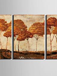 Paisagem / Botânico Impressão em tela 3 Painéis Pronto para pendurar , Vertical