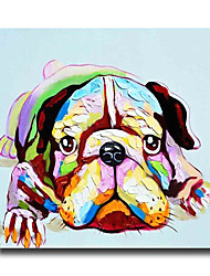 Modern Wall Art Pictures Animal Dog Oil Painting On Linen Home Decoration  Abstract Painting With Frame