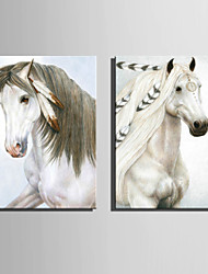 E-HOME® Stretched Canvas Art The White Horse Decoration Painting  Set Of 2