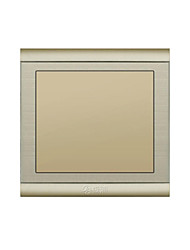 Champagne Gold Wire Drawing Material Wall Switch