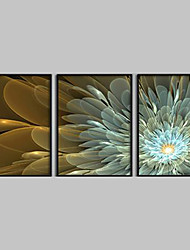 Abstract Flowers  Framed Canvas Print Set of 3