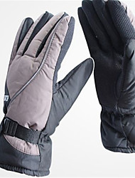 Waterproof And Cold Winter Fashion Cotton Motorcycle Gloves