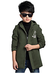 Boy's Casual/Daily Solid Down & Cotton PaddedCotton / Rayon Winter / Spring / Fall Blue / Green / Red