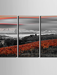 E-HOME® Stretched Canvas Art Mountains And Red Woods Decoration Painting Set of 3