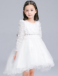 Girl's Casual/Daily Solid DressCotton Winter / Spring / Fall White