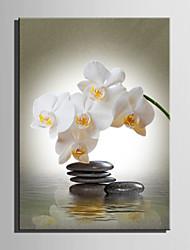 E-Home® Декоративная роспись на холсте, камень и белые цветы