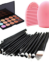 20 teiliges Profi Make-up-Set / Puder Foundation / Eyeliner, Lippenstift Make-up Pinsel Set + 15 Farben Concealer + Pinselreiniger
