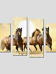 Stretched Canvas Print Animal Modern,Four Panels Canvas Any Shape Print Wall Decor For Home Decoration