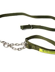 Cães Trelas Retratável Sólido Preto / Verde Náilon