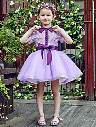 Ball Gown Short / Mini Flower Girl Dress - Lace / Tulle Short Sleeve High Neck with Buttons / Flower(s) / Sash / Ribbon