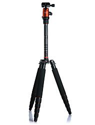 fotopro x-4 c fph-42q (o) fibre de carbone trépied léger et portable