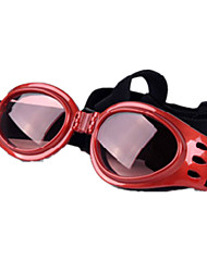 Dog Sunglasses Red / Black Dog Clothes Winter / Summer / Spring/Fall Solid Sports / Casual/Daily / Windproof