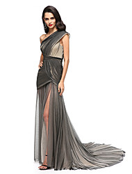 TS Couture Formal Evening Dress - Furcal Celebrity Style Sheath / Column One Shoulder Court Train Tulle