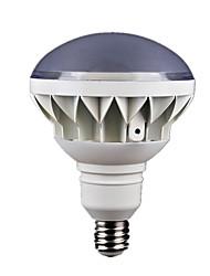 LED Flood Light Accessories