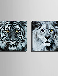E-HOME Stretched Canvas Art Tiger and  Lion Decoration Painting  Set of 2