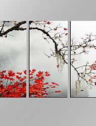 VISUAL STAR®3 Panels Maple Levaes Wall Art Forest Painting Pictures Print On Canvas For Home Modern Decoration